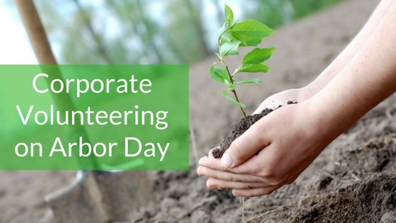 Ideas for Arbor Day corporate volunteering